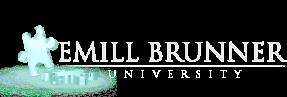 Cursos Online Emillbrunner formação profissional